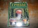 Грибы. Большая энциклопедия.2005 г.