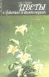 Утенко И.С. Цветы в букетах и композициях 1988 г.