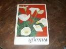 Жоголева В. Г.Цветы. 1979 г. Я-271